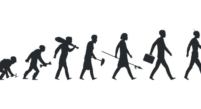 Homo Sapiens Norbert Biedrzycki